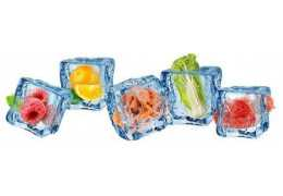 Cómo conservar alimentos en nuestra cámara frigorífica
